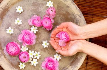 فواید معجزه آسای گلاب را بدانید