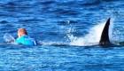 حمله ترسناک کوسه به موج سوار + تصاویر