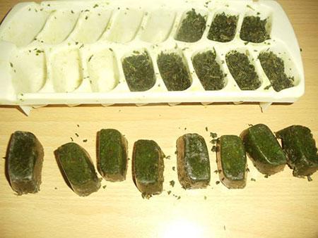 روش هایی مناسب برای فریز کردن سبزیجات