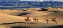 آشنایی با بزرگترین بیابان های جهان (عکس)