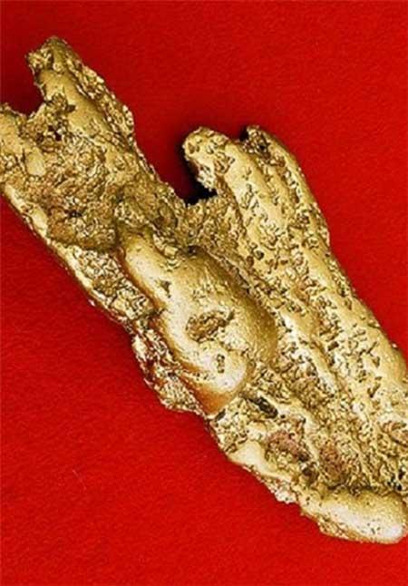 یافتن سنگ طلا با وزن 27.7 کیلوگرم در استرالیا (عکس)