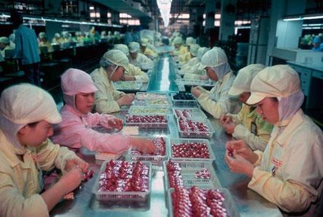 آشنایی با یک کارخانه عروسک سازی در چین