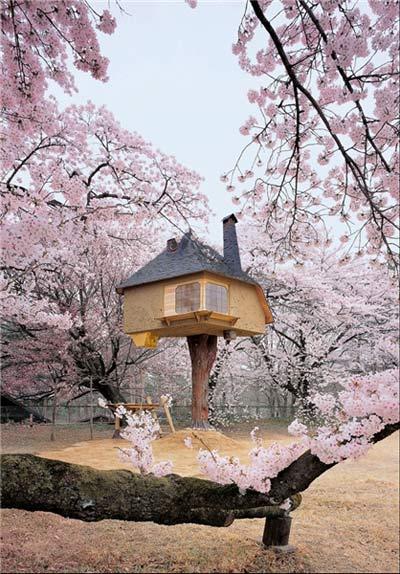 آشنایی با چایخانه تتسو در ژاپن + تصاویر