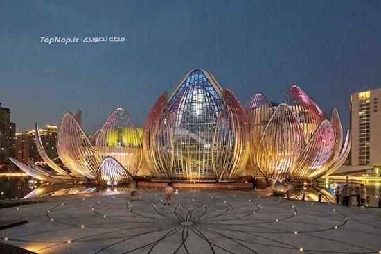 ساختمان نیلوفر آبی در ووجین کشور چین + تصاویر