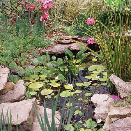 عکس چیدمان باغچه های کوچک و جالب