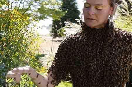 این زن عجیب با زنبور ها زندگی میکند (+عکس)