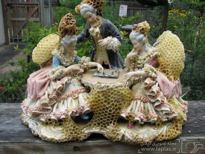 ساخت مجسمه های جالب با کمک زنبورها (عکس)