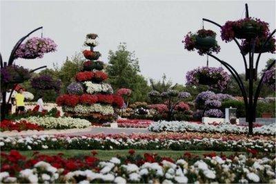 باغ گل العین امارات رکورد گینس را از آن خود کرد