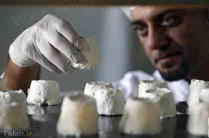 تولید بهترین پنیر جهان از شیر الاغ + عکس