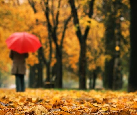 اس ام اس های احساسی مخصوص پاییز