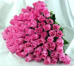 آشنایی با گل ظهر