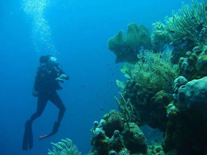 عکس هایی دیدنی از یک ویلای بی نظیر در وسط دریا