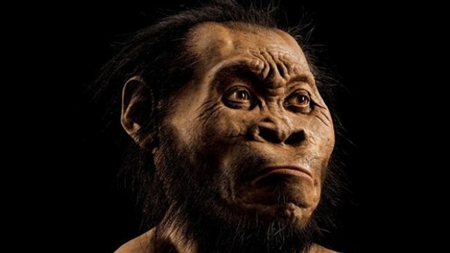 کشف گونه ای از انسان های اولیه (+عکس)