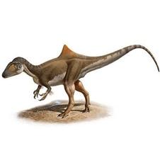 کشف دایناسور 130 میلیون ساله + عکس