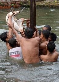 زجرکش کردن حیوان بیچاره توسط مردم این روستا (+عکس)