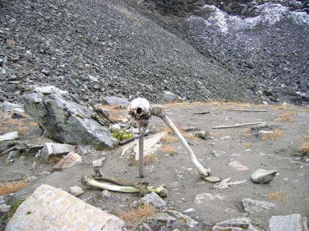 دریاچه ای عجیب و غریب پر از اسکلت انسان ! (عکس)