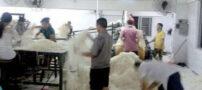 طرز تهیه غیر بهداشتی نودل در چین (عکس)