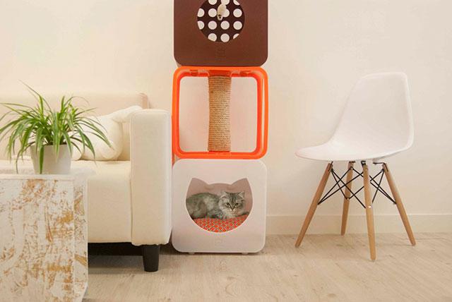 طراحی خانه ای با جای خواب برای گربه ها