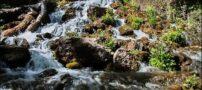 آب این آبشار زیبای ایرانی ملخ ها را ریشه کن میکند