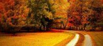 اس ام اس های عاشقانه و احساسی پاییز (8)