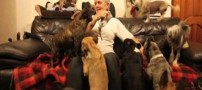 زندگی جالب یک زوج با بیش از 40 سگ + تصاویر