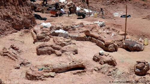 کشف استخوان های دایناسور در آرژانتین