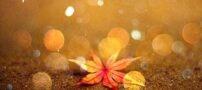 اس ام اس های زیبا و احساسی مخصوص پاییز