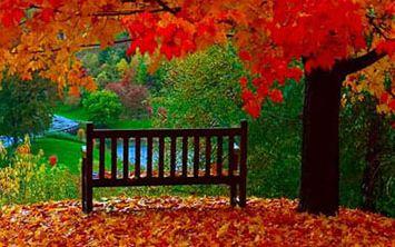 اس ام اس های احساسی و زیبای پاییز (7)