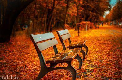 اس ام اس احساسی و زیبای پاییزی (12)