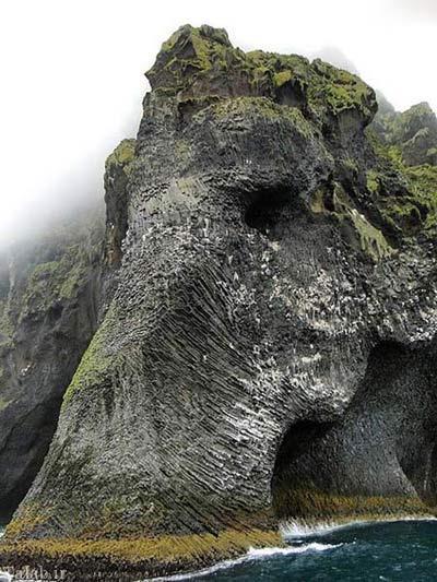 صخره ای زیبا و شگفت انگیز به شکل فیل + عکس