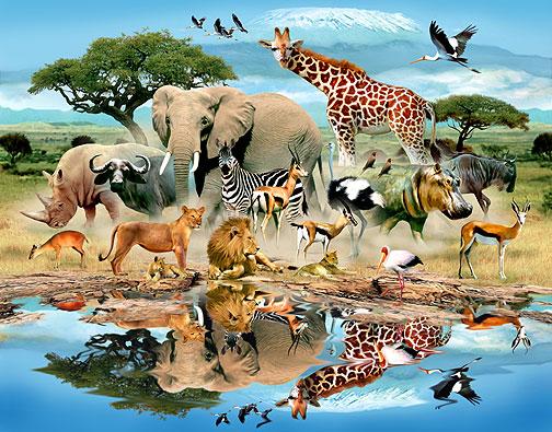دانستنی های جالب از دنیای حیوانات