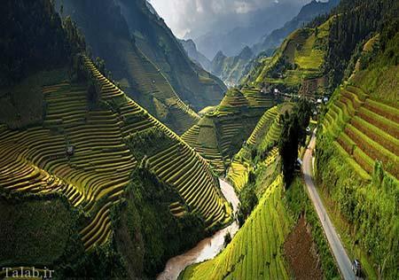 تصاویر رویایی و هوایی از زمین های کشاورزی