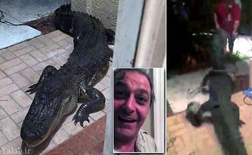 تمساح مهمان ناخوانده خانواده آمریکایی + عکس