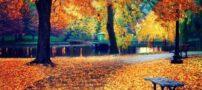 اس ام اس جدید و زیبای فصل پاییز