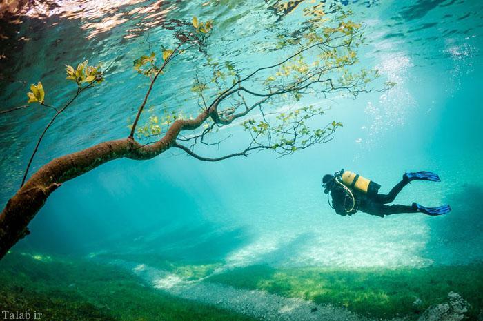 عکس های برتر سال به انتخاب نشنال جئوگرافی