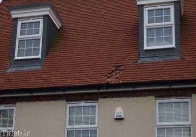 سوراخ شدن پشت بام توسط باران مدفوع + عکس