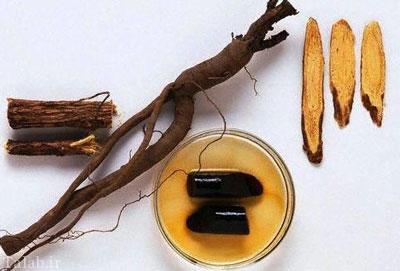 گیاه شیرینبیان و خواص درمانی موثر