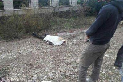 قتل دردناک دختر نوشهری (تصاویر 18+)
