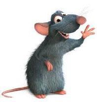حکایتی بسیار جالب و خواندنی از موش