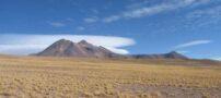 تصاویر دیدنی از بیابانی که با یک سیل تبدیل به بهشت شد