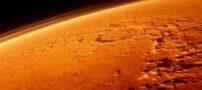 وجود یک خرس در مریخ ؟! (عکس)