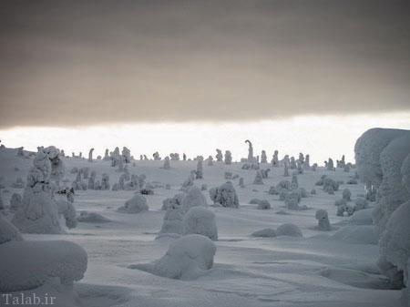نمای جالب یک پارک زیبا در فنلاند (عکس)