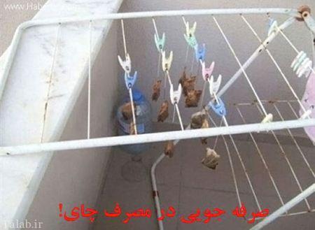 عکس خنده دار از روزگار دانشجویی