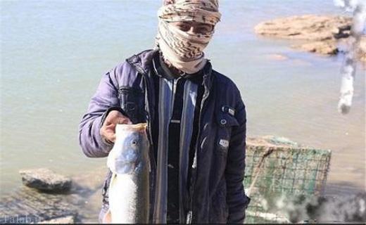 تفریح و خوشگذرانی جالب داعشی ها (عکس)