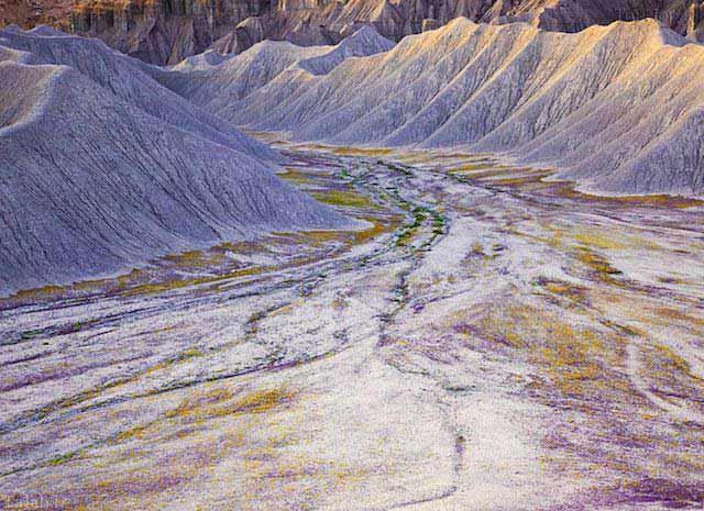 زیباترین بیابان ها در ایالات متحده امریکا