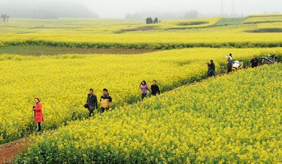 تصاویری از بهشت چین
