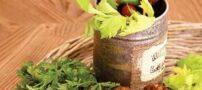 طرز تهیه چابلی کباب با سیخ چوبی