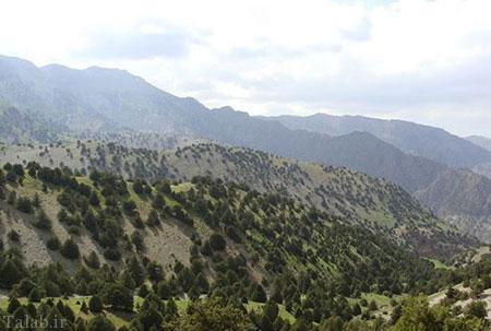 آبشار زیبای نورالی در رشته کوه هزار مسجد (عکس)