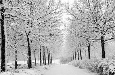 نکاتی که برای سفرهای زمستانی باید بدانید