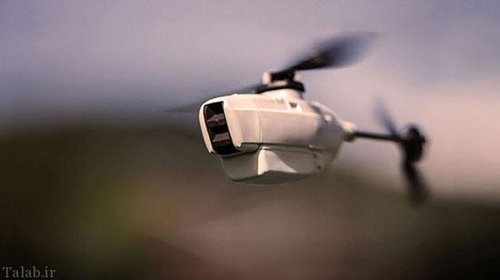 حشره جاسوس و پیشرفته آمریکا + عکس